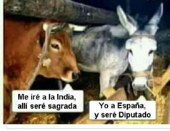 burro-y-vaca