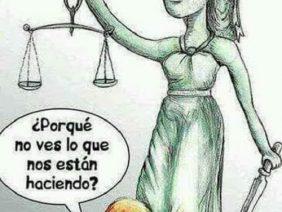 MANGONEO JUDICIAL
